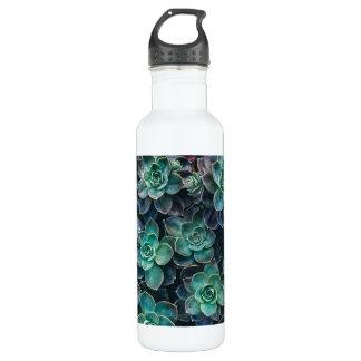 Relaxing Green Blue Succulent Cactus Plants 710 Ml Water Bottle