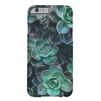 Relaxing Green Blue Succulent Cactus Plants Barely There iPhone 6 Case