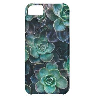 Relaxing Green Blue Succulent Cactus Plants iPhone 5C Case