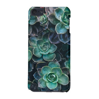 Relaxing Green Blue Succulent Cactus Plants iPod Touch 5G Cases
