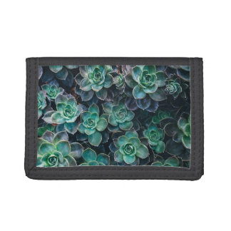 Relaxing Green Blue Succulent Cactus Plants Trifold Wallets