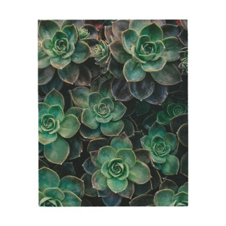 Relaxing Green Blue Succulent Cactus Plants Wood Print