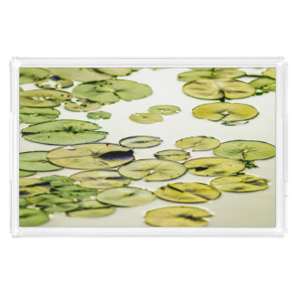 Relaxing Green Lily Pad Pond Wait For Frog Prince Acrylic Tray