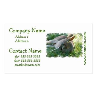 Relaxing Kangaroo Business Cards