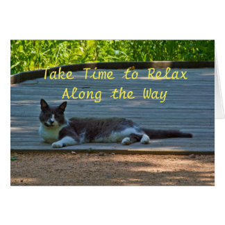 Relaxing Kitty Stationary Card