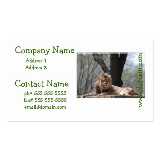Relaxing Lion Business Cards
