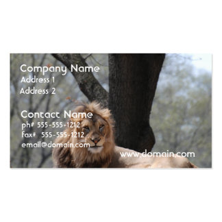 Relaxing Lion Business Card