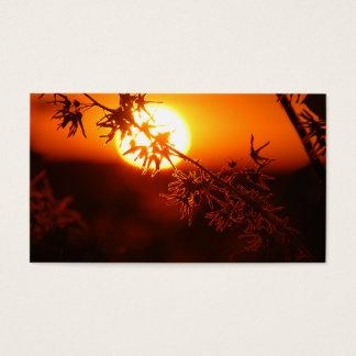 Relaxing Sunset