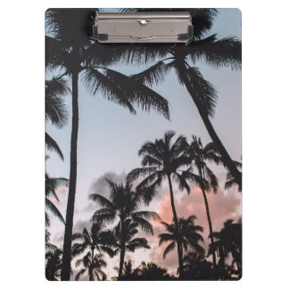 Relaxing Tropical Palm Trees Sunset Clipboards