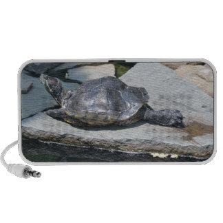 relaxing turtle mini speaker