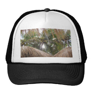 Relaxing under the Palm Trees Mesh Hat