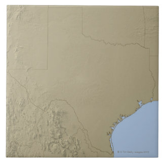 Relief Map of Texas 2 Large Square Tile