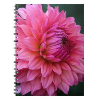 Reluctant Debutante Notebook