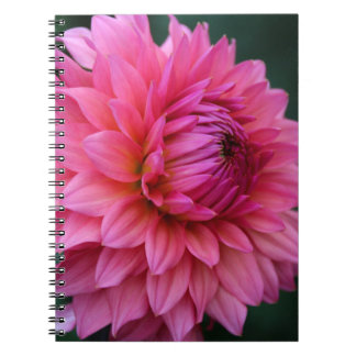 Reluctant Debutante Spiral Notebook
