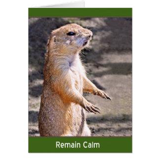 Remain Calm Card