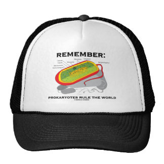 Remember: Prokaryotes Rule The World Mesh Hat