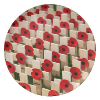 Remembrance Day Dinner Plate