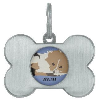 Remi's tag