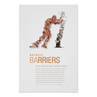 Remove Barriers: Sustainability Principle Poster