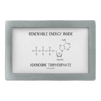 Renewable Energy Inside Adenosine Triphosphate Belt Buckle