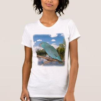 Rensselaer Bird Center - T-shirt