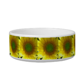 Repeating Sunflowers Bowl