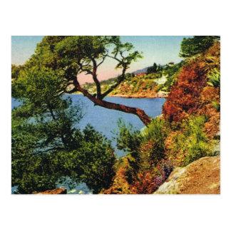 Replica Vintage  postcard, Toulon, Cap Brun Postcard