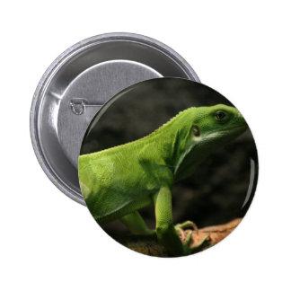 reptile merchandise pins