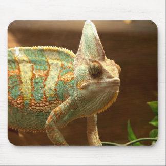reptile mousepad