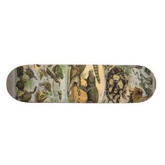 Reptiles 21.6 Cm Old School Skateboard Deck