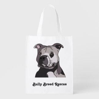 Rescue American Bulldog Pit Bull Terrier Portrait