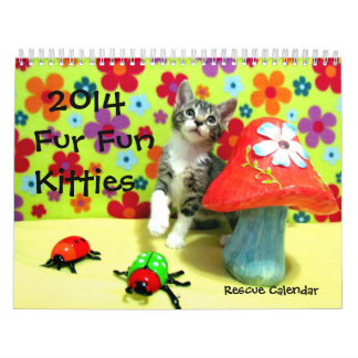 Rescue Cat / Kitten Calenda -- NEW FOR 2014! Wall Calendar