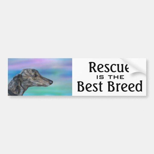 Rescue is the Best Breed Bumpersticker Bumper Stickers