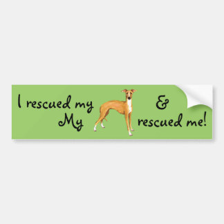 Rescue Italian Greyhound Bumper Sticker