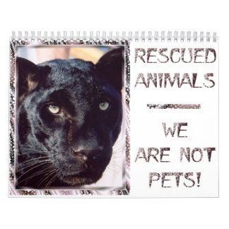 Rescued Animals - We are Not Pets Calendars