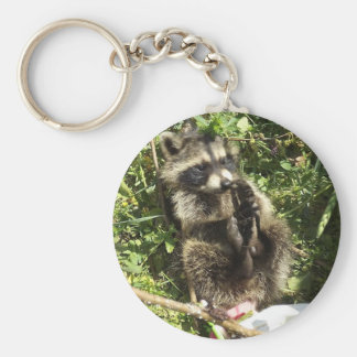 Rescued & Rehabilitated Raccoon Baby Basic Round Button Key Ring