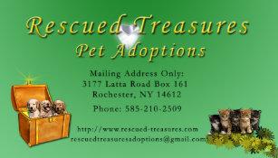 Pet Adoption Business Cards | Zazzle AU