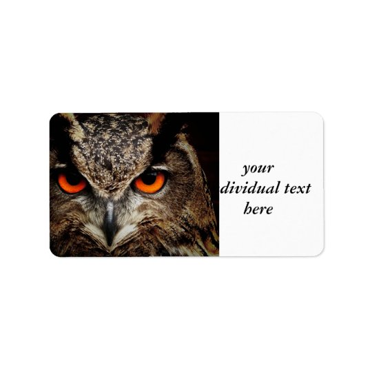 researchers looking owl address label