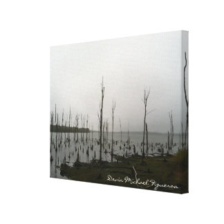 Resevior by Devin Michael Figueroa Stretched Canvas Prints