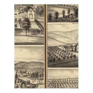 Residences of CP Hatch, Wm Sexton, JM Freeman Postcard