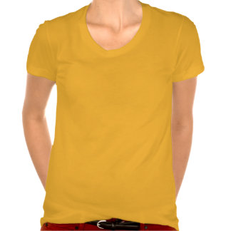 Respect Women's American Apparel Poly-Cotton Scoop Tee Shirt