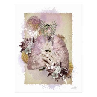 """Respiratory"" postcard"