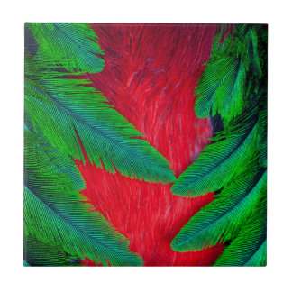 Resplendent Quetzal feather design Small Square Tile