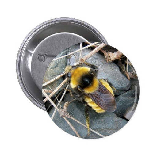 Resting Bee Button