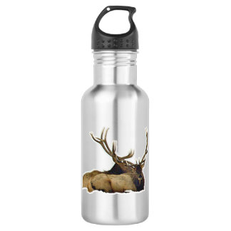 Resting bull elk 532 ml water bottle