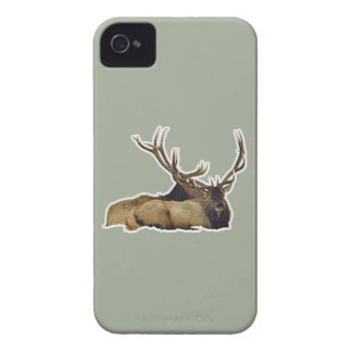 Resting bull elk Case-Mate iPhone 4 case