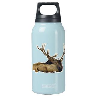 Resting bull elk insulated water bottle