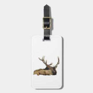 Resting bull elk luggage tag