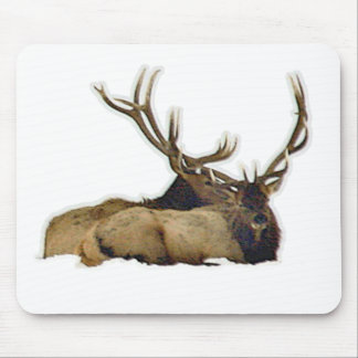 Resting bull elk mouse pad