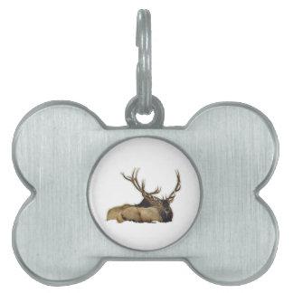 Resting bull elk pet name tag